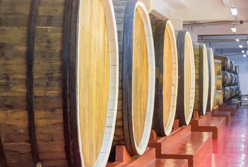 Row of a oak wine barrels