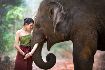 Asia pretty girl standing front to a collision with an elephant.