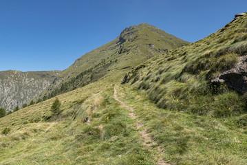 Panorama alpino