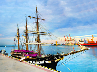 Panorama of the port cranes ships