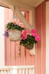 Blumenampel mit Geranien an rosa Holzhauswand, Skandinavien
