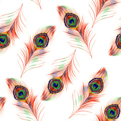 Watercolor peacock feather seamless pattern on white background