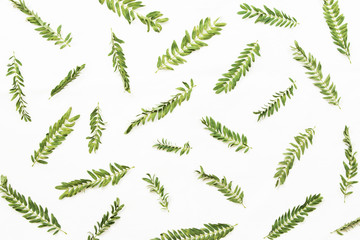 Patterns with leaves on white background, top view.