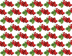 Cranberries Vintage pattern Vector. Watercolor painting. Red berry, green colors