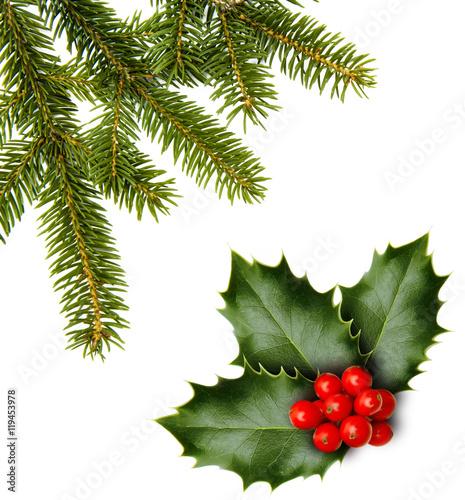 weihnachtszweige stockfotos und lizenzfreie bilder auf bild 119453978. Black Bedroom Furniture Sets. Home Design Ideas