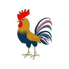 Bright cockerel on a white background. A lovely illustration of a rooster in hand drawn style.