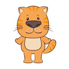 cat animal cartoon