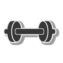 dumbbells weights equipment