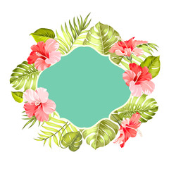 Tropical flower frame with text place for summer vacation description. Vector illustration.