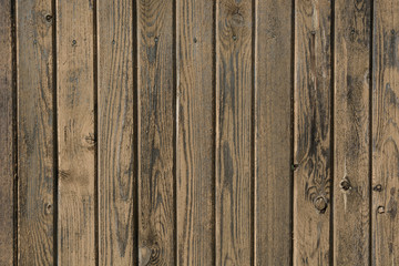 Rustic wood background.