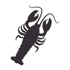 lobster animal sea