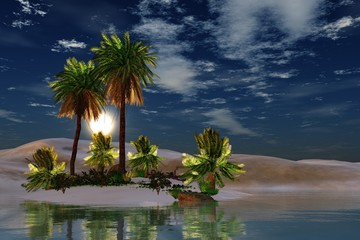 Palm trees over the water. oasis in the desert. sun over palm trees.
