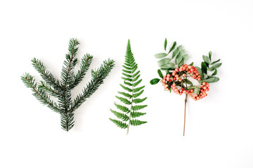 branches of pine needles, ferns and mountain ash. flat lay, top view autumn wallpaper