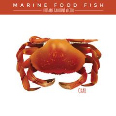 Crab. Marine Food Fish
