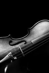 violin & beautiful rim light showing beautiful classic shape. bw filter isolated on black