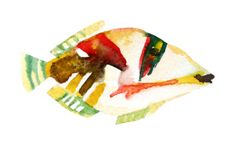Exotic fish (tropical Picasso triggerfish). Watercolor