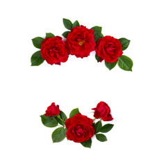 Frame of red roses (shrub rose) on a white background with space for text
