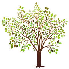 Vector tree with green leaves on white background