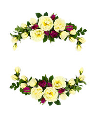 Frame of white and red roses (Burnet double white, shrub rose) on a white background with space for text