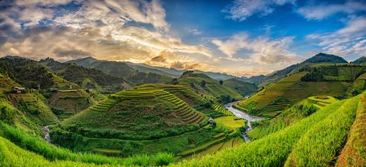 Fotobehang Rijstvelden Green Rice fields on terraced in Mu cang chai, Vietnam Rice fiel