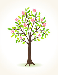 Blossom tree with pink flowers - vector illustration.