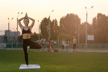 Beautiful young yoga woman practicing outdoors