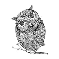 Zentangle style owl. Isolated illustration with ornanets fill for adult coloring book page design