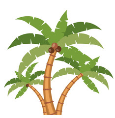 palm tree plant nature green coconut leaves  icon. Colorful design. Vector illustration