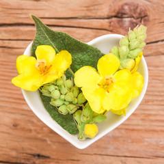 Homöopathie und Kochen mit Heilkräutern, Königskerze