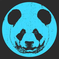 Portrait of Panda. Hand-drawn illustration. T-shirt design. Vector
