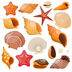 Shells And Sea Stars Icon Set