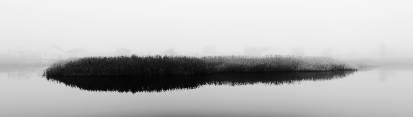 Reeds in fog. Rural landscape with river. Reeds in fog. Autumn. Panorama. Black and white photo