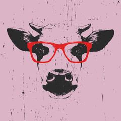 Portrait of Cow with glasses. Hand-drawn illustration. T-shirt design. Vector