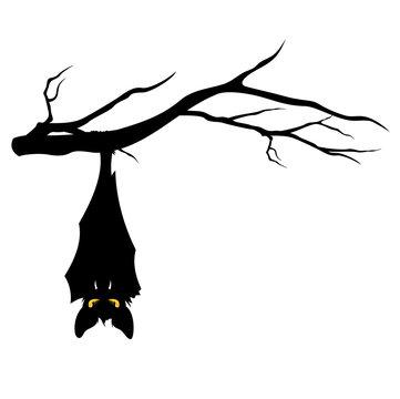 halloween bat on tree branch