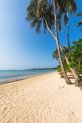 Fototapete - Tropical Beach and Coconut palm tree at Koh Mak Island ,Thailand