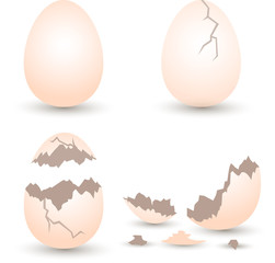 egg broken set with crack effect on white background. egg and eggshell vector illustration