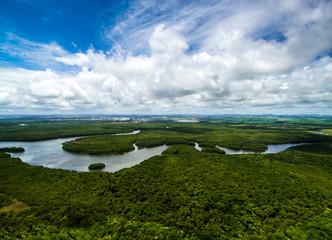 Amazon rainforest in Brazil, South America