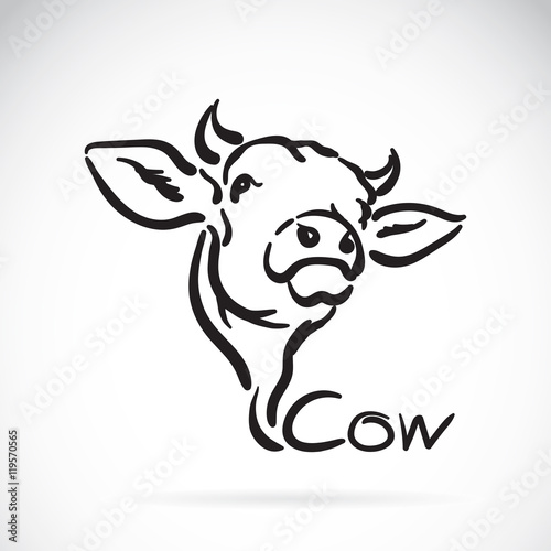 quotvector of a cow logo on white backgroundquot stock image