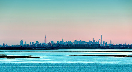 Panorama of New York with the landscape in the foreground