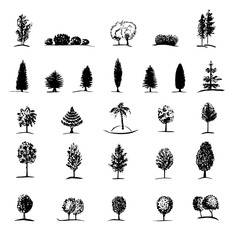 Set of hand drawn sketch trees