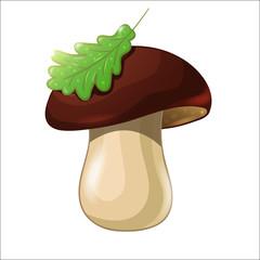 Cartoon colored mushroom isolated on white background. Porcini