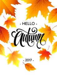 Hello, Autumn. The trend calligraphy. Background of Fall leaves. Concept leaflet, flyer, poster advertising. Vector illustration