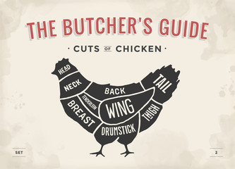 Cut of meat set. Poster Butcher diagram and scheme - Chicken. Vintage typographic hand-drawn. Illustration.