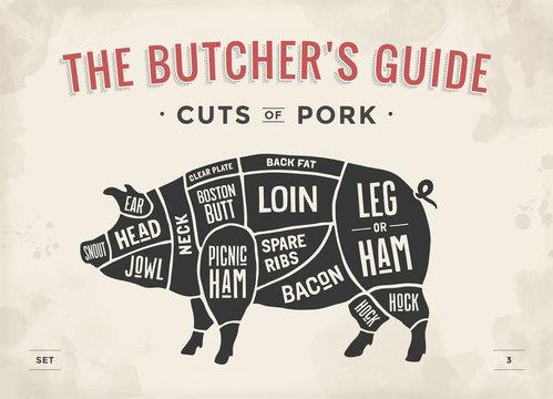 Cut of meat set. Poster Butcher diagram, scheme and guide - Pork. Vintage typographic hand-drawn. Illustration.
