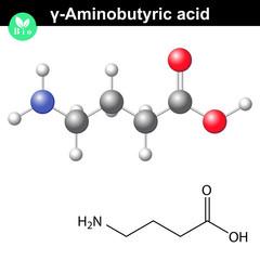 gamma Aminobutyric acid synaptic neurotransmitter