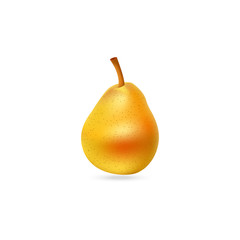 Tasty pear illustration. Fruit icon.