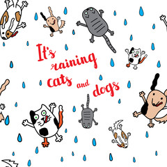 """It's raining cats and dogs"" autumn card."