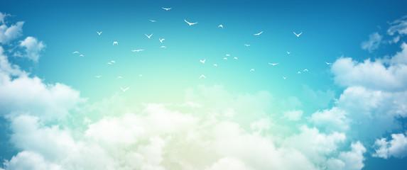 Morning sky sensation