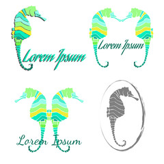 Seahorse logo and icon set. Isolated on white background.