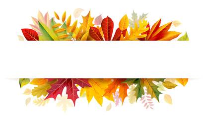 Autumn bunner